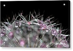 Cristal Flower Acrylic Print by Sylvie Leandre