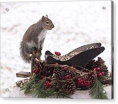Critter Christmas Acrylic Print