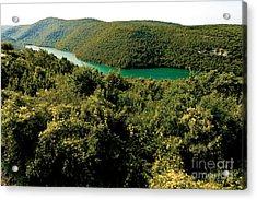 Croatia River Acrylic Print by Boon Mee