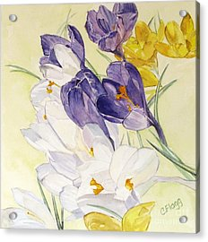 Acrylic Print featuring the painting Crocus by Carol Flagg