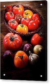 Crop Tomatoes Acrylic Print
