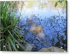 Cross Alight The Pond - Holyhead Acrylic Print by Jenny A Jones