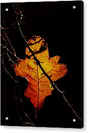 Cross And Thorns Acrylic Print