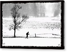 Cross Country Skiier Canaan Valley Acrylic Print by Dan Friend