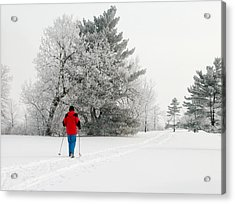 Cross Country Skiing Acrylic Print by Rob Huntley