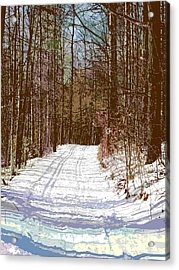 Acrylic Print featuring the photograph Cross Country Trail by Nina Silver