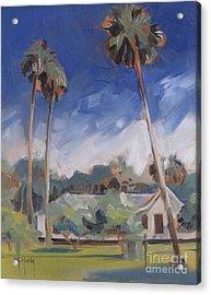 Cross Creek Palms  Acrylic Print
