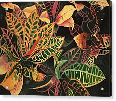 Croton Leaves Acrylic Print by Judy Swerlick