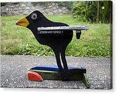 Crow Air Force 1 Acrylic Print