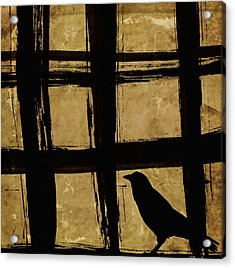 Crow And Golden Light Number 2 Acrylic Print by Carol Leigh