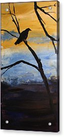 Crow IIi Acrylic Print by Rosemarie Hakim
