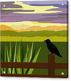 Crow In The Corn Field Acrylic Print