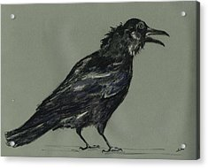 Crow Acrylic Print by Juan  Bosco