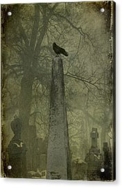 Crow On Spire Acrylic Print by Gothicrow Images