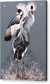 Acrylic Print featuring the painting Crowned Cranes by DiDi Higginbotham