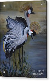 Crowned Cranes Acrylic Print