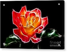Acrylic Print featuring the photograph Crystal Rose by Mariola Bitner