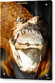 Acrylic Print featuring the digital art Cuban Crocodile by Daniel Janda