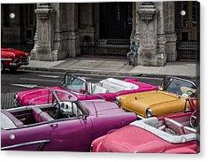 Cuban Dream Acrylic Print