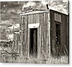 Cuervo Come On In 2 Acrylic Print by Lee Craig