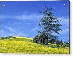 Culdasac Homestead Acrylic Print