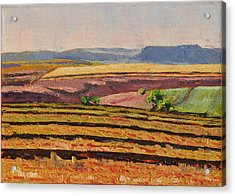 Acrylic Print featuring the painting Cultivated Fields Near Ficksburg South Africa Bertram Poole by Thomas Bertram POOLE