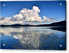 Cumulonimbus Over Water Lilies Acrylic Print by Rich Rauenzahn