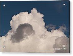 Cumulus Congestus Acrylic Print by Sue Smith