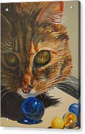 Acrylic Print featuring the painting Curious by Karen Ilari