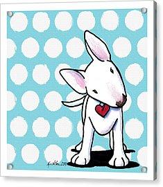 Curious Little Bully Acrylic Print by Kim Niles