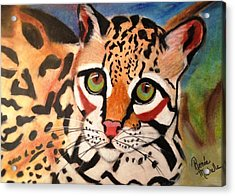 Curious Ocelot Acrylic Print by Renee Michelle Wenker