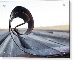 Curled Steel Acrylic Print