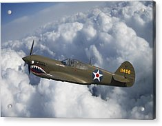 Curtiss P-40 Warhawk Flying Tigers Acrylic Print by Adam Romanowicz