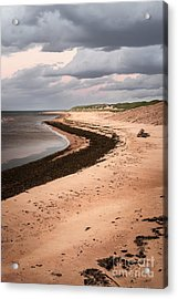 Curves On Beach Acrylic Print by Elena Elisseeva