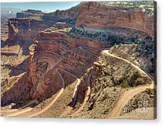 Acrylic Print featuring the photograph Curves by Wanda Krack