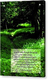 Cut Your Own Path Acrylic Print by Mike Flynn