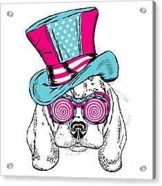 Cute Dog In An Unusual Hat . Vector Acrylic Print