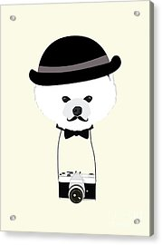 Cute Dog Photographer With Old Camera Acrylic Print
