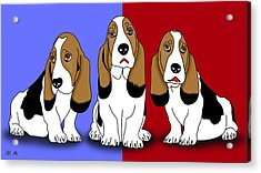 Cute Dogs 2 Acrylic Print by Mark Ashkenazi