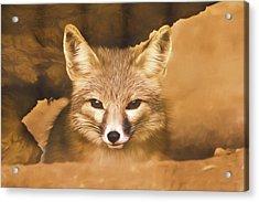 Cute Fox  Acrylic Print