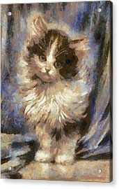 Cute Kitty Acrylic Print