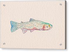 Cutthroat Trout Acrylic Print by Stephen Moore