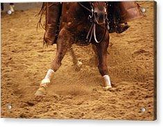 Cutting Horse 6 Acrylic Print
