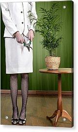 Cutting Plant Acrylic Print by Joana Kruse