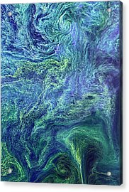 Cyanobacteria Bloom Acrylic Print by Nasa