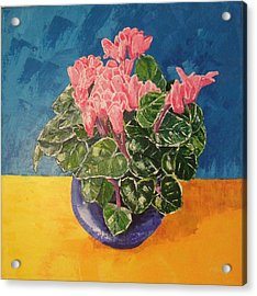 Cyclamen Sunset Acrylic Print