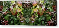 Cycle 4 - Autumn Acrylic Print