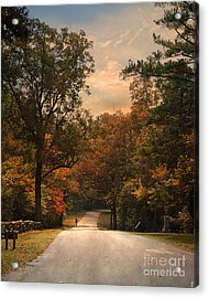 Cycling Season Acrylic Print by Jai Johnson