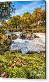 Cyfyng Falls Acrylic Print by Adrian Evans