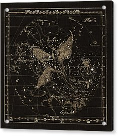 Cygnus Constellations, 1829 Acrylic Print by Science Photo Library
